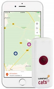 traceur gps chat
